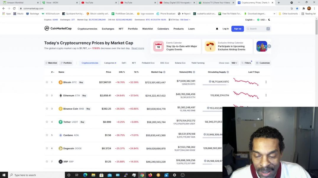 Who Survived the Crypto Crash? Are You Scared Yet?